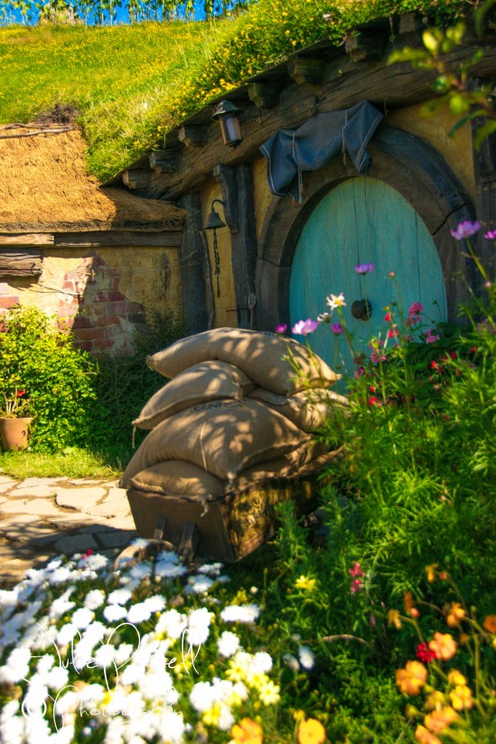 Hobbiton, the Shire